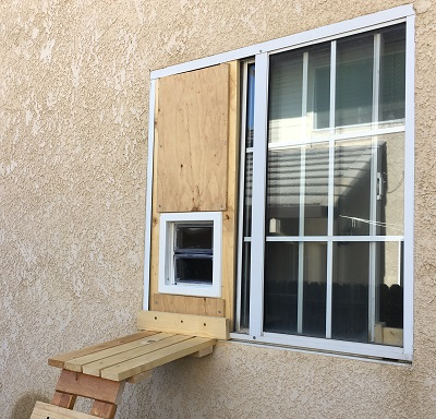 Cat Door: A Landlord's Money Maker